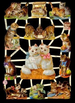 Glanzbilder Katzen,Jugendtraum,  Glanzbilder,  Glanzbilder,  Katzen