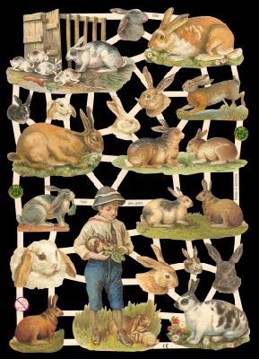 Glanzbilder Kaninchen,Jugendtraum
