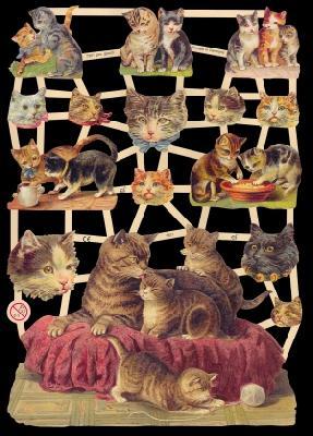 Glanzbilder Katzen,Jugendtraum