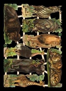 Glanzbilder mit Glimmer,  Glanzbilder,  Tiere,  Everyday,  Löwen,  Tiger ,  Elefant,  Zebra,  Zoo