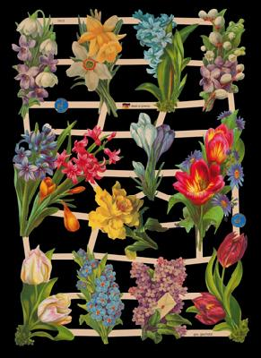 Poesiebilder / Glanzbilder,  Glanzbilder mit Glimmer,  Blumen,  Tulpen,  Narzissen