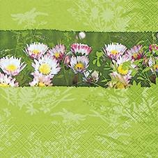 Lunch Servietten Daisy View,  Blumen -  Sonstige,  Everyday,  lunchservietten,  Gänseblümchen