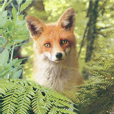Lunch Servietten Ricky the Fox