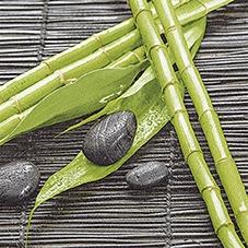 Everyday,  Sonstiges - Steine,  Pflanzen,  Regionen - Asien,  Everyday,  lunchservietten,  Bambus,  Steine