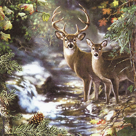 Lunch Servietten Deers on a Creek,  Regionen - Wald / Wiesen,  Everyday,  lunchservietten,  Hirsch,  Reh