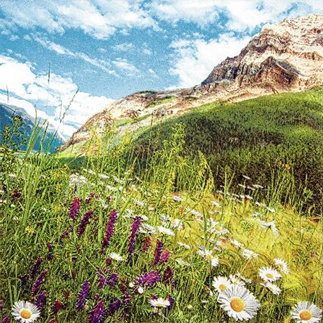Lunch Servietten Mountain Scenery,  Regionen - Wald / Wiesen,  Everyday,  lunchservietten,  Wiese,  Berge
