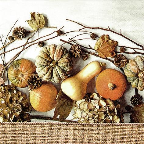 Servietten 33 x 33 cm,  Früchte - Zapfen,  Früchte - Kürbisse,  Everyday,  lunchservietten,  Hortensien,  Kürbisse,  Zapfen