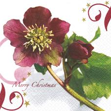 Lunch Servietten Christmas Rose
