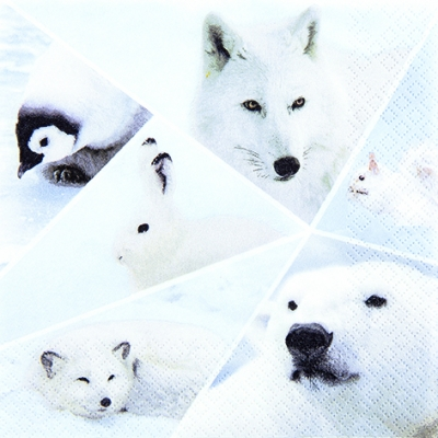 Lunch Servietten Winter Life,  Tiere - Bären,  Tiere - Hasen,  Tiere - Pinguine,  Weihnachten,  lunchservietten,  Eisbären,  Hase,  Pinguin