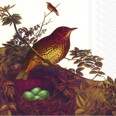Artikel nach Firmen,  Tiere - Vögel,  Herbst,  cocktail servietten,  Vögel