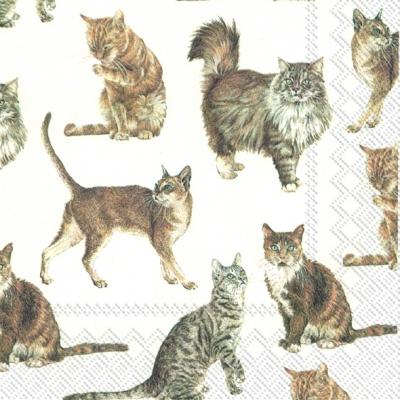 Lunch Servietten MY FAVORITE CAT,  Tiere - Katzen,  Everyday,  lunchservietten,  Katzen
