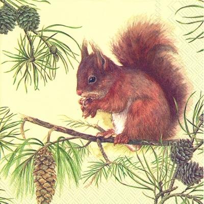 Servietten 33 x 33 cm,  Tiere - Eichhörnchen,  Everyday,  lunchservietten,  Eichhörnchen