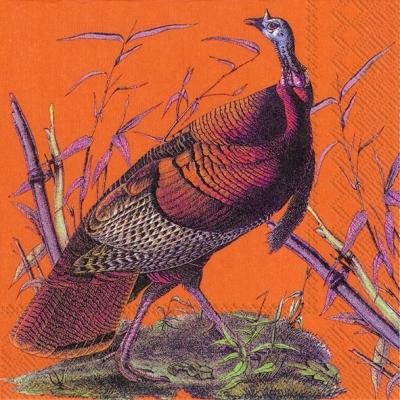 Lunch Servietten WILD TURKEY,  Tiere - Vögel,  Herbst,  lunchservietten,  Pute