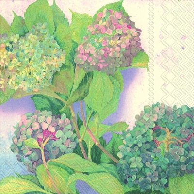 Lunch Servietten HYDRANGEA BUSH,  Blumen -  Sonstige,  Everyday,  lunchservietten,  Hortensien