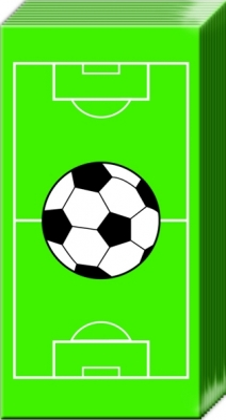 Taschentücher GREEN FIELD,  Sport,  Everyday,  bedruckte papiertaschentücher,  Ball,  Fussball