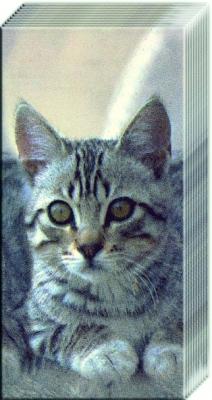 Taschentücher CUDDLY CAT