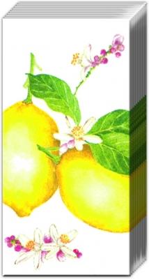 Taschentücher CITRUS MEDICA white,  Früchte,  Everyday,  bedruckte papiertaschentücher,  Zitronen