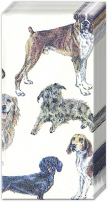 Taschentücher / Tiere,  Tiere,  Everyday,  bedruckte papiertaschentücher,  Hunde