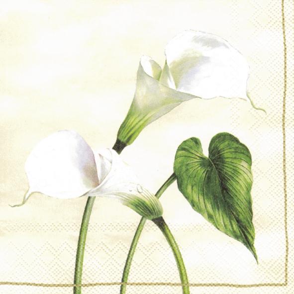 Lunch Servietten Arum Lily cream,  Blumen -  Sonstige,  Everyday,  lunchservietten,  Callas