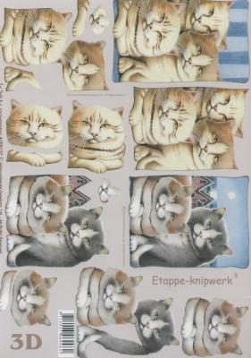 3D Bogen Format A4,  Tiere - Katzen,  3D Bogen,  Katzen