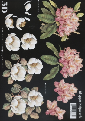 3D Bogen 2x Blumen Format A4