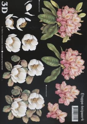 3D Bogen Rhodedendron/schwarz - Format A4,  Blumen -  Sonstige,  Le Suh,  Sommer,  3D Bogen,  Blumen