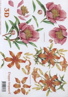 3D Bogen Format A4,  Blumen -  Sonstige,  Le Suh,  Sommer,  3D Bogen,  Lilien,  Pfingstrosen