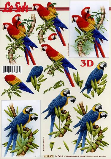 3D Bogen Papageien - Format A4,  Tiere - Vögel,  Le Suh,  3D Bogen,  Vögel,  Papagei