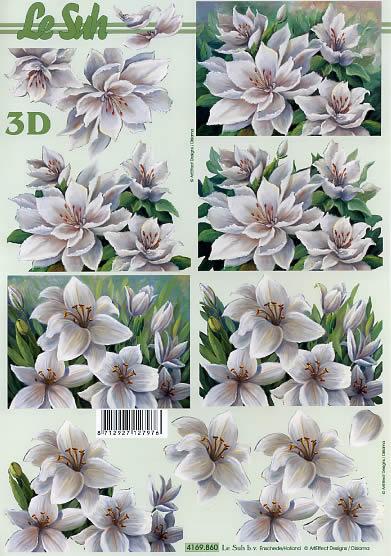 3D Bogen Weiße Blumen - Format A4,  Blumen,  Le Suh,  3D Bogen,  Lilien