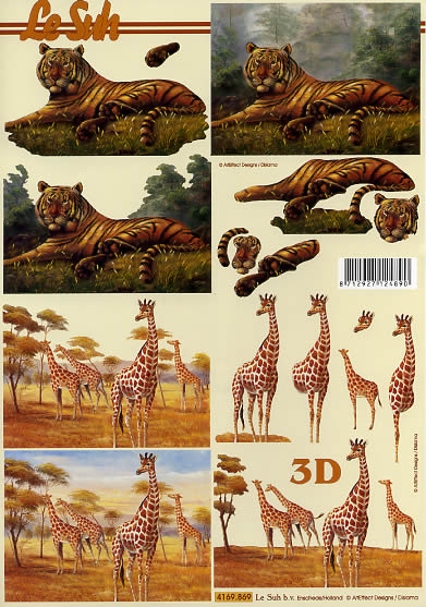 3D Bogen Tiger und Giraffe - Format A4,  Tiere -  Sonstige,  Le Suh,  3D Bogen,  Tiger,  Wüste