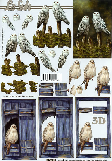 3D Bogen Eule und Habicht - Format A4,  Tiere - Vögel,  Le Suh,  3D Bogen,  Eule und Habicht