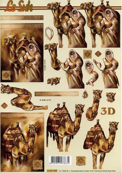 3D Bogen Format A4, Tiere -  Sonstige,  Regionen - Afrika,  Le Suh,  3D Bogen,  Afrika,  Kamel