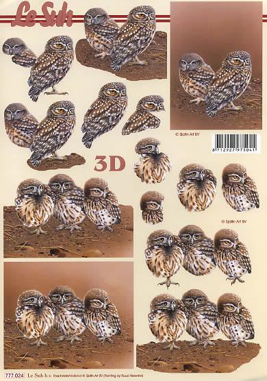 3D Bogen Eulen - Format A4,  Sonstiges -  Sonstiges,  Le Suh,  3D Bogen,  Steinkautz,  Eulen