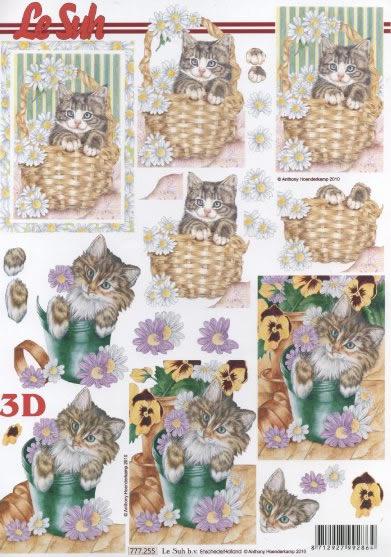 3D Bogen  - Format A4,  Blumen - Stiefmütterchen,  3D Bogen