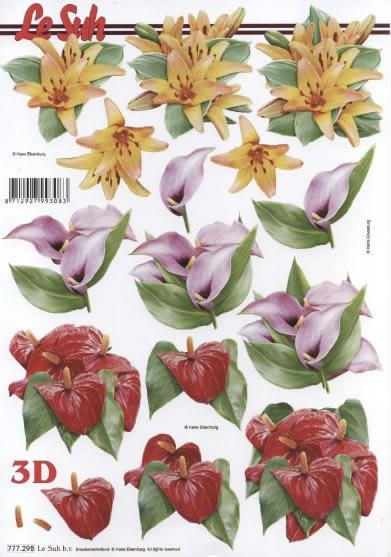 3D Bogen Format A4,  Blumen -  Sonstige,  Le Suh,  3D Bogen,   Anthurien