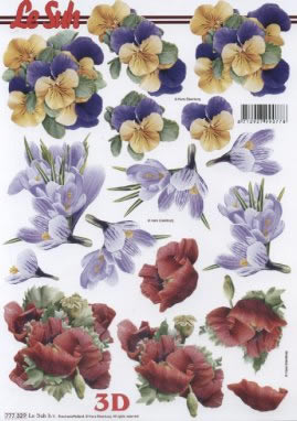 3D Bogen Format A4, Blumen - Mohn,  Blumen - Stiefmütterchen,  Le Suh,  3D Bogen,  Mohn,  Krokus