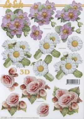 3D Bogen  - Format A4,  Blumen - Primeln,  Le Suh,  3D Bogen,  Primeln