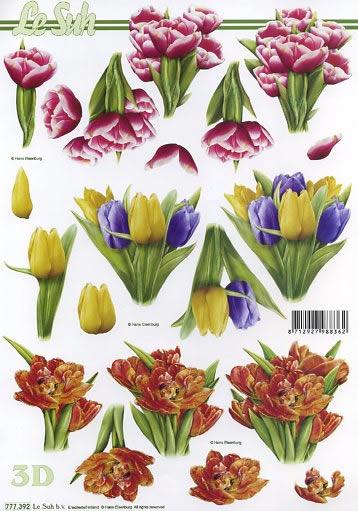 3D Bogen Format A4,  Blumen - Tulpen,  Le Suh,  Frühjahr,  3D Bogen,  Tulpen