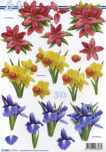 3D Bogen  - Format A4,  Blumen - Osterglocken,  Le Suh,  3D Bogen,  Narzissen