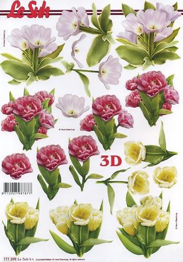 3D Bogen  - Format A4,  Le Suh,  3D Bogen,  Frühlingsblumen