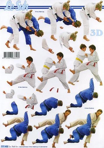 3D Bogen  - Format A4,  Le Suh,  3D Bogen,  Judo,  kämpfen