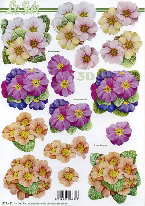 3D Bogen Format A4,  Blumen - Primeln,  Le Suh,  Frühjahr,  3D Bogen,  Primeln