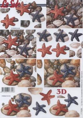 3D Bogen / Firmen,  Regionen - Strand / Meer - Muscheln,  Le Suh,  3D Bogen,  Seesterne