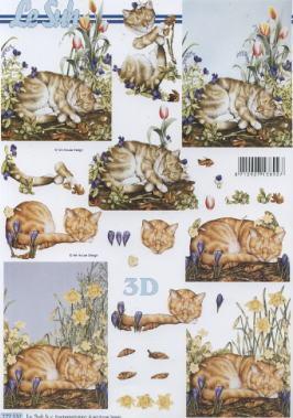 3D Bogen Katzen - Format A4,  Le Suh,  3D Bogen,  Katzen