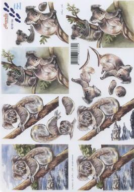 3D Bogen / alle anderen,  Tiere - Bären,  Le Suh,  3D Bogen,  Koala