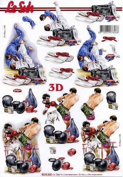 3D Bogen Judo/Boxen - Format A4,  Sport -  Sonstiger,  Le Suh,  3D Bogen,  Boxen,  Judo