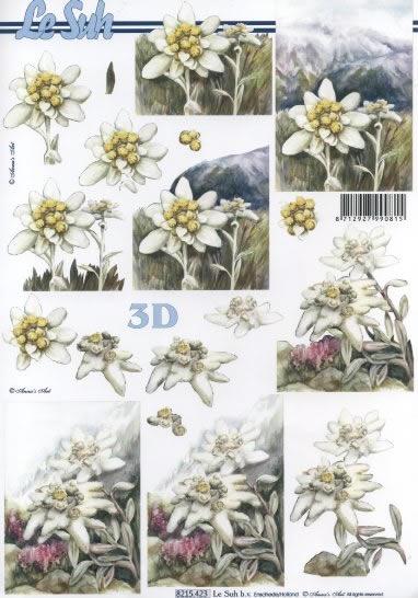 3D Bogen Edelweiss - Format A4,  Blumen -  Sonstige,  Le Suh,  Sommer,  3D Bogen,  Edelweiß