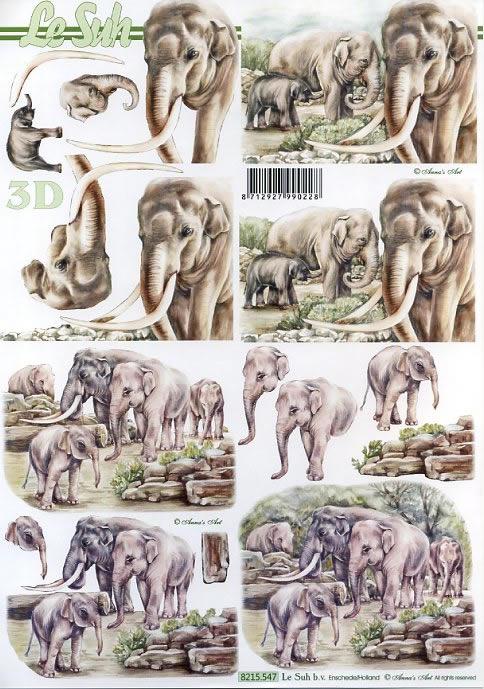 3D Bogen / Elefanten,  Le Suh,  3D Bogen