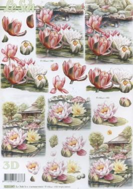 3D Bogen / Nouvelle,  Blumen - Seerosen,  Le Suh,  3D Bogen,  Seerosen