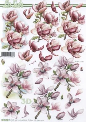 3D Bogen 2x Magnolien Format A4 - Format A4,  Blumen - Magnolien,  Le Suh,  Frühjahr,  3D Bogen,  Magnolien